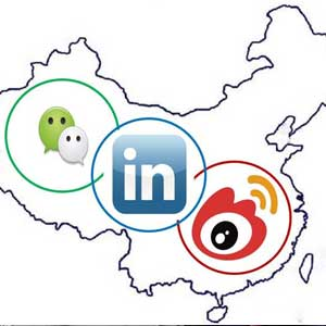 What Do Young Professionals in China Prioritize When Searching for Jobs?